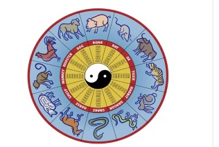 The Chinese Calendar is strange | Museum of Natural Science and History